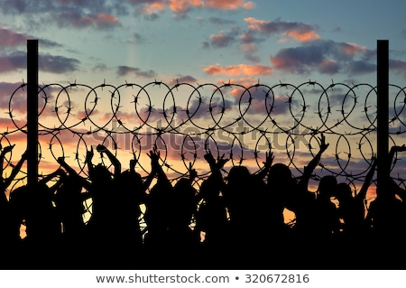 refugee camp jail fence stock photo © vilevi