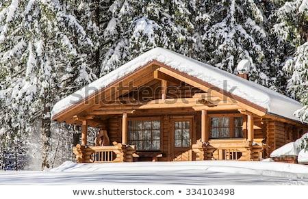 old wooden house in winter mountains stock photo © kotenko