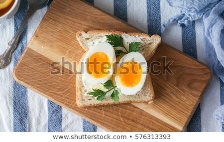 Puha főtt tojás pirítós tojástartó pirított kenyér Stock fotó © Digifoodstock