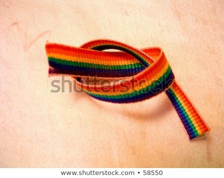 Cravatta nodo matrimonio gay corda colori Foto d'archivio © albund