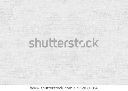 ラフ 段ボール テクスチャ パターン デザイン ストックフォト © freesoulproduction