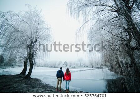 belo · casal · posando · congelada · rio · parque - foto stock © tekso