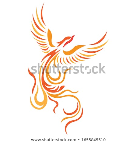 Flat line Phoenix banner stock photo © Yuriy