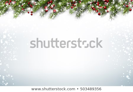 Christmas Background with Holly Stock photo © derocz