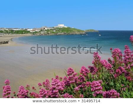muhteşem · batı · plaj · cornwall · mavi · güneş - stok fotoğraf © latent