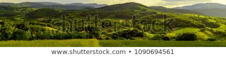 Serbian landscape Stock photo © boggy