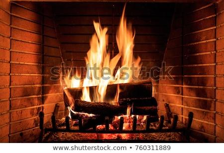 Fuego calor ceniza ardor chimenea Foto stock © romvo