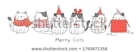 Katten winter twee vergadering venster kijken Stockfoto © MyosotisRock