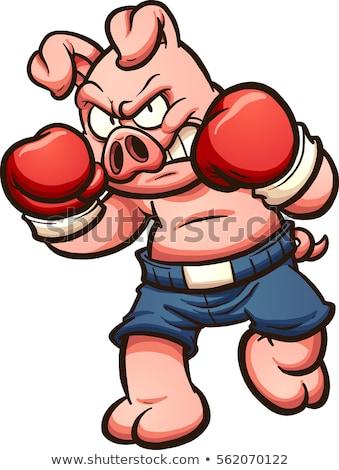 Rajz disznó boxeralsó illusztráció boxoló rövidnadrág Stock fotó © cthoman