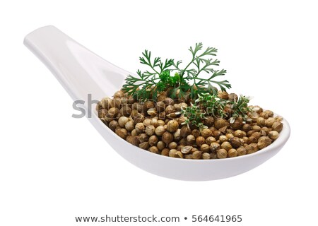 Spoon of coriander seeds, flowers, paths Stock photo © maxsol7