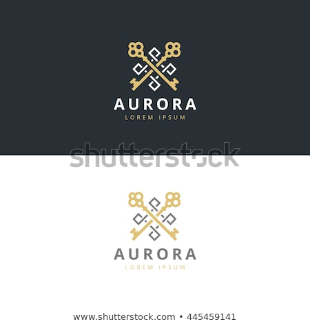 Anahtar vektör ikon logo dizayn Stok fotoğraf © blaskorizov