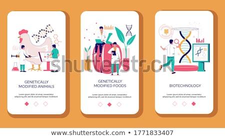 Genetically modified foods app interface template. Stock photo © RAStudio