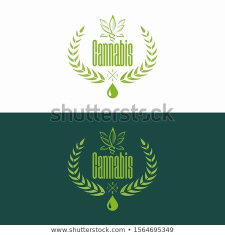 Marihuána felirat cannabis vektor logo ikon Stock fotó © blaskorizov
