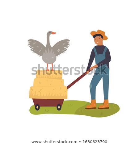 Camion fieno lavoro farm vettore icona Foto d'archivio © robuart