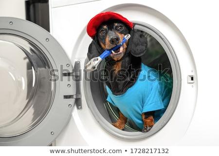Stockfoto: Grappig · werken · professionele · loodgieter · sleutel · pop · art