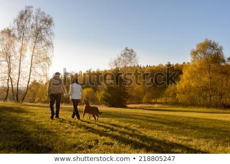 trekking · bos · holding · handen · jonge · man · vrouw - stockfoto © elenabatkova