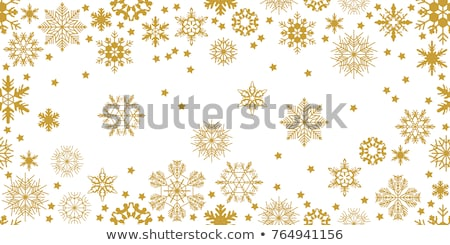Vektör ayarlamak altın Noel kar tanesi süsler Stok fotoğraf © Pravokrugulnik