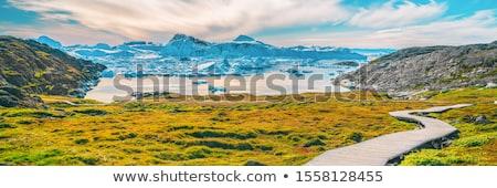 Caminhadas trilha caminho ártico natureza paisagem Foto stock © Maridav