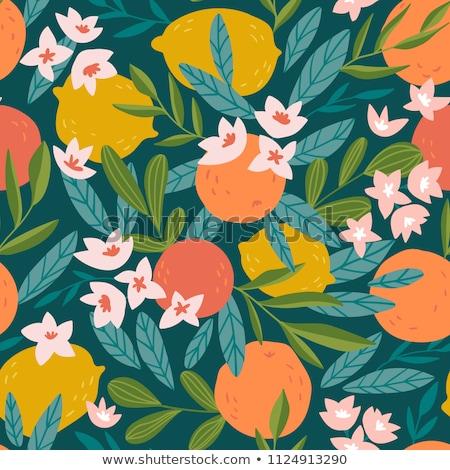 brilhante · fruto · sem · costura · lata · separadamente · projeto - foto stock © freesoulproduction