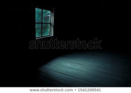Oude verlaten huis houten deur textuur Stockfoto © dariazu