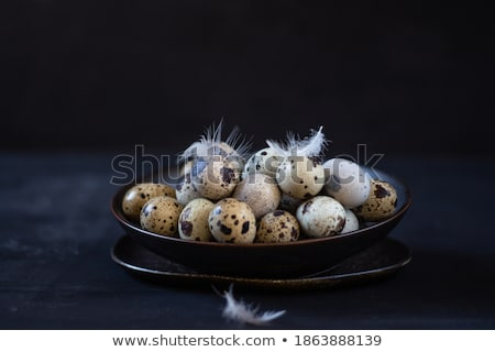 close up of colored eggs and feathers in bowl Stock photo © dolgachov