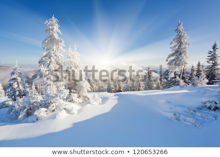 Snowy Landscape With Mountains On Sunny Winter Day Stock photo © AndreyPopov