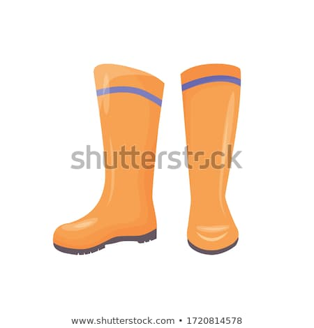 Rubber Wellingtons or Gumboot for Water Protection Stock photo © robuart