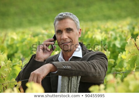 Buy, the wine is gonna be good this year. Stock photo © photography33