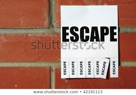 Tear-off Escape ad on the bulletin wall Stock photo © pekour