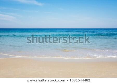 ocean waves shoreline Stock photo © clearviewstock