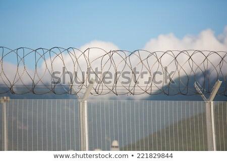 Cerca navalha arame topo blue sky céu Foto stock © filmstroem