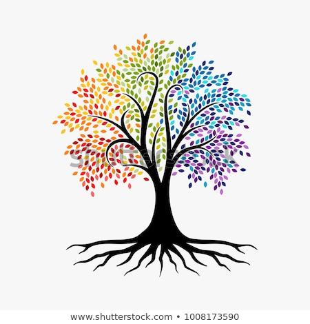 illustrazione · albero · crescita · libro · aperto · impianto · libro - foto d'archivio © vg
