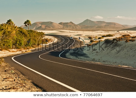 canary islands winding road curves and car stock photo © lunamarina