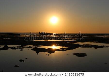 seashore silhouette Stock photo © dolgachov