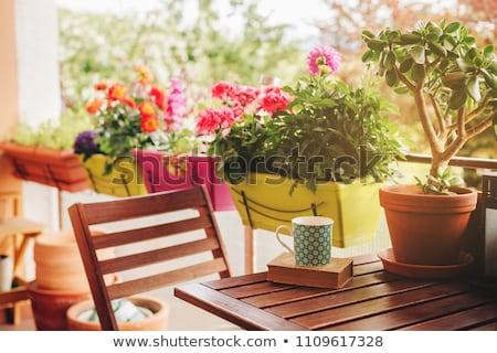 varanda · flores · flor · casa · edifício - foto stock © tannjuska