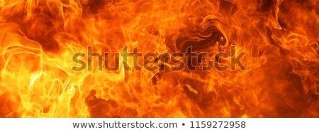 Ardente natura fumo web rosso caldo Foto d'archivio © Ecelop