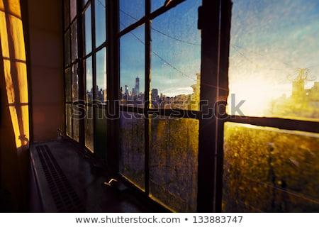 Lower Manhattan Skyline Afternoon Window Stock photo © eldadcarin