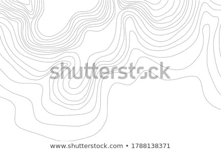 Wood Lines Stock photo © hlehnerer