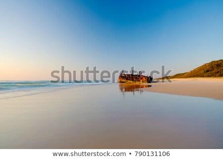 Foto stock: Praia · ilha · dead · tree · queensland · Austrália · madeira