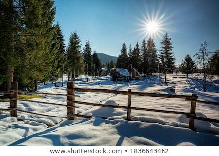 高山 村 春 森林 自然 風景 ストックフォト © Geribody