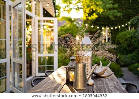 Casa de campo jardim ver fora quarto janela Foto stock © trgowanlock