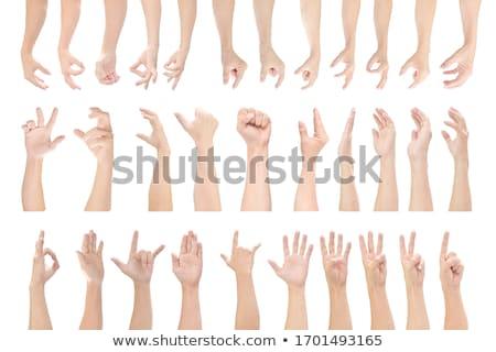 Vuist gebaar hand witte palm huid Stockfoto © oly5