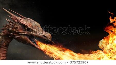 dragon fire breath stock photo © fouroaks
