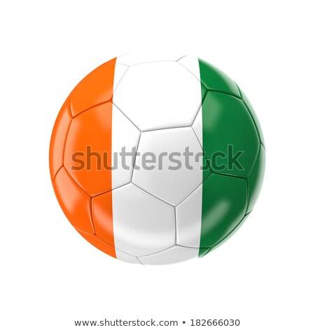 Futball futball labda Elefántcsontpart zászló 3D Stock fotó © daboost