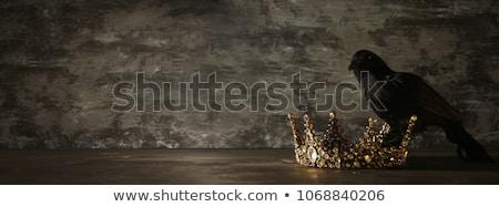 Középkori sötét lovag sisak férfi test Stock fotó © anbuch