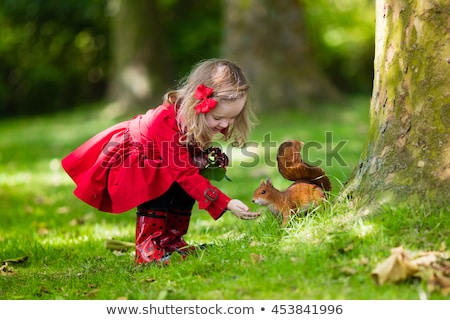 девочку белку девушки лес Сток-фото © nizhava1956