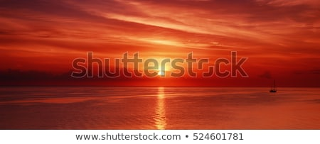 red sunset stock photo © oblachko