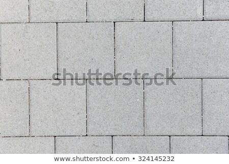 Gray Figured Pavement  Slabs. Stock photo © tashatuvango