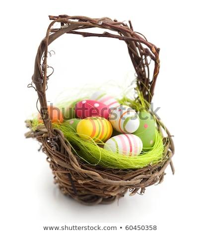 Pintado ovos de páscoa marrom cesta isolado branco Foto stock © gavran333