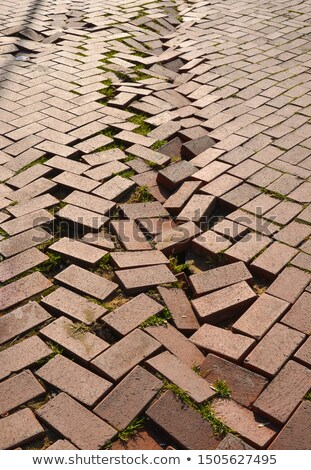 коричневый конкретные тротуар бесшовный строительство Сток-фото © tashatuvango